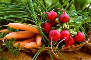 Перші овочі: купувати чи ні?